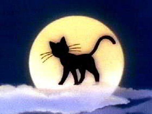 http://moonlightdance.ucoz.ru/_ph/5/617602128.jpg
